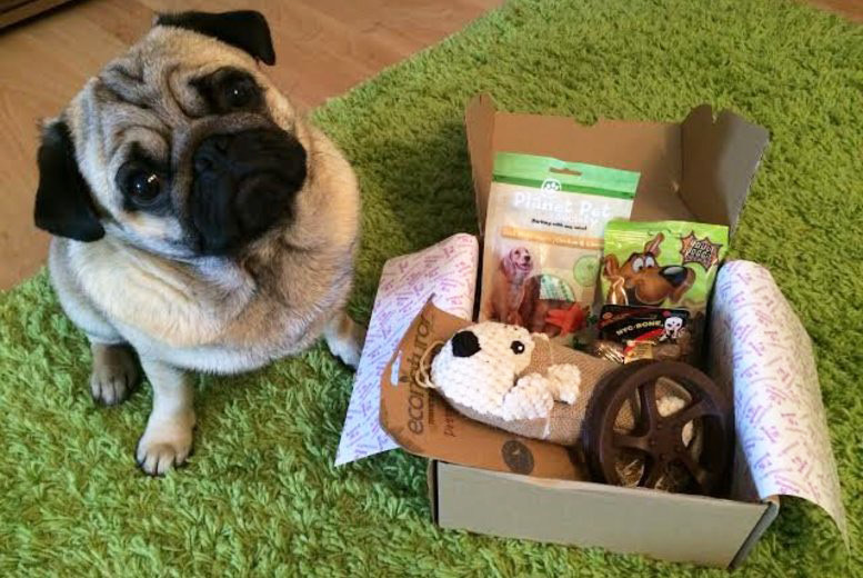 £6 instead of £19 for a tailor-made treat box for your dog from Viva Dogs - save 68%
