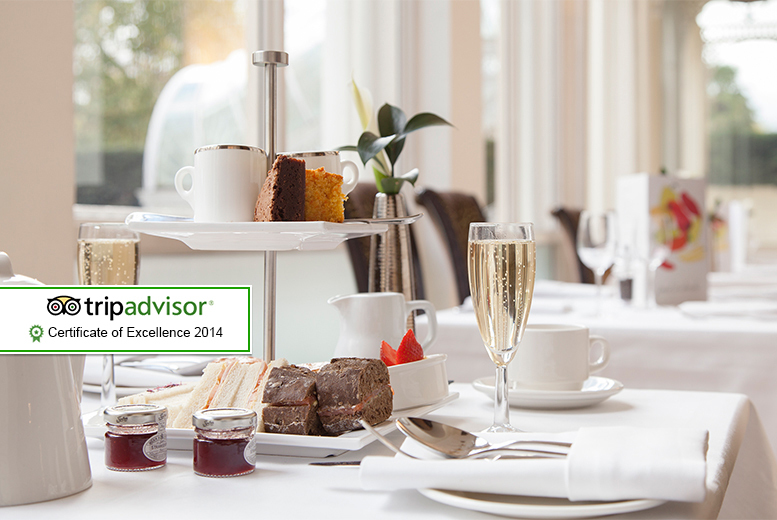 £19 for an afternoon tea for 2 including sandwiches, mini cakes and more, or £24 for a sparkling afternoon tea at the Thistle Hyde Park Hotel - save up to 62%
