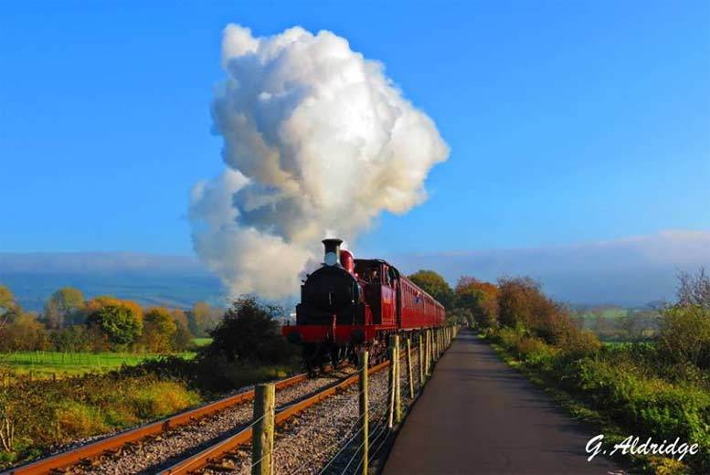 £8 instead of £16 for all day rover tickets on Avon Valley Steam Train for two, £12 for a family of up to six - save up to 47%
