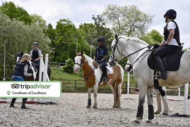 £39 for a three hour horse riding experience suitable for beginners or advanced riders with tea and cake at Trent Park Equestrian Centre, Oakwood - save up to 61%