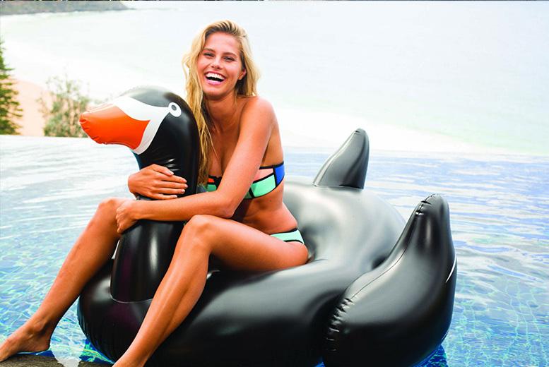 Inflatable Swan Uk