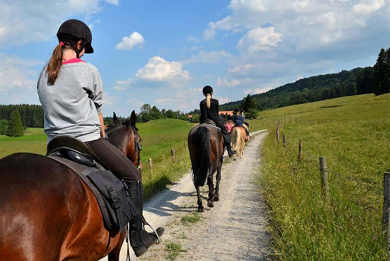 £39 for a 2-hour horse trail ride and picnic with Equine Learning, Wootton Wawen