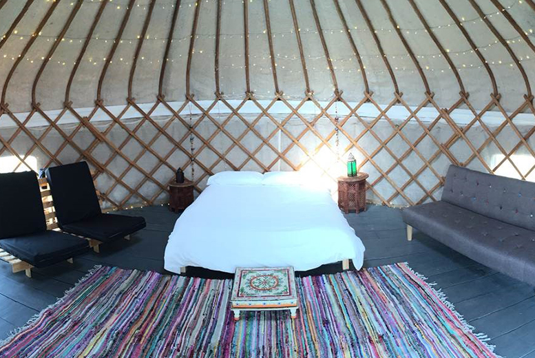 £69 instead of up to £125 (at The Hollies Kessingland) for 3nt weekend or 4nt weekday break for 2 in a Hollie Pod or £149 for up to 6 people in a Yurt - save up to 52%