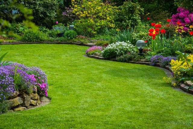 Lawn Care Treatment, Fertilizer & Weed Control