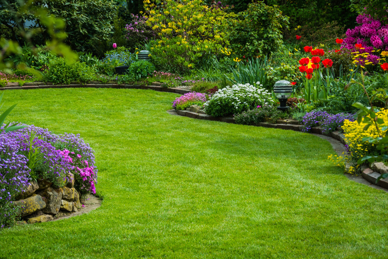 £9 for a 100sq m lawn treatment with fertilizer & weed control, £17 for 200sq m, or £25 for 400sq m from Greensleeves Lawn Care, Eastbourne - save up to 50%