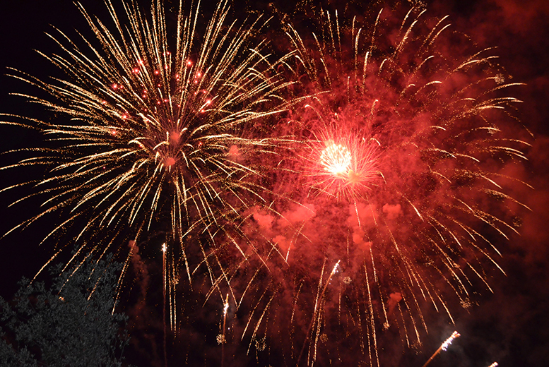 £3 for an adult ticket to the Harrow fireworks display, from £5 for a family ticket - save 50%