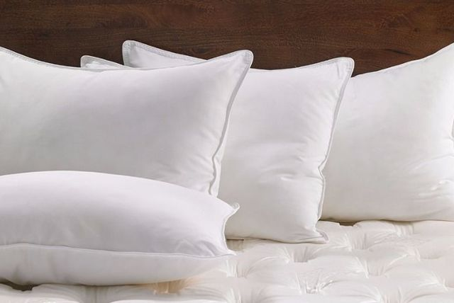 duck feather pillows
