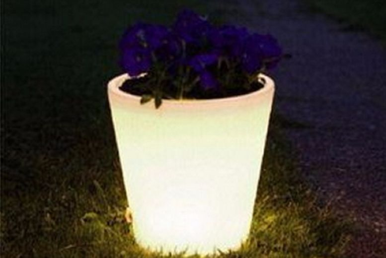 £3.99 instead of £14.99 for a Colour Changing Plant Pot from Gift Mountain - save up to 73%