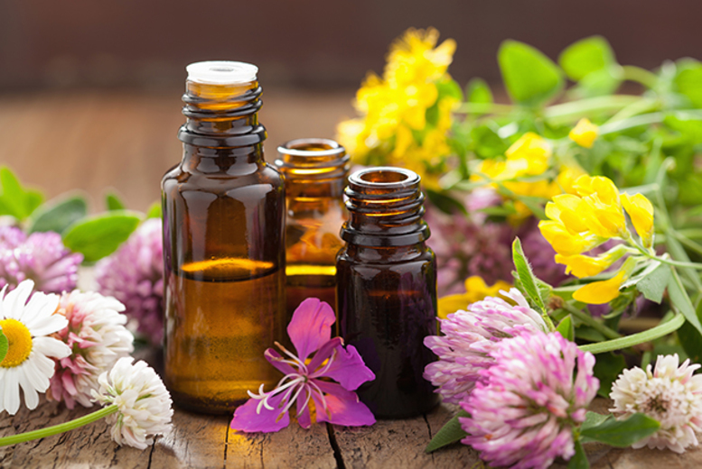 £19 instead of £330 (from Centre of Excellence) for a certified online aromatherapy diploma course - save 94%