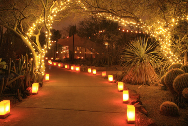 Exceptional Solar Powered Patio Lights
