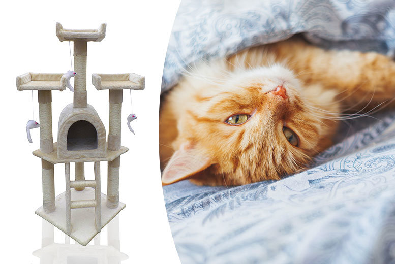 Happy Cat Scratch Centre & Scratching Posts from £29
