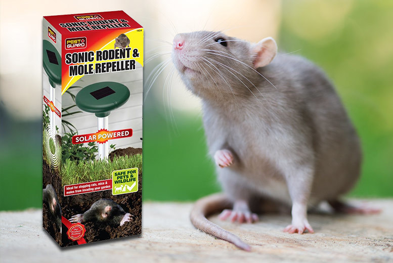 Solar-Powered Sonic Rodent Repeller from £9