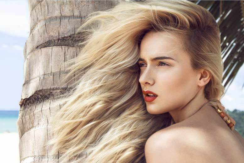 Sheffield: Cut, Highlights, Conditioning & Blow Dry @ Headlines Artisan from £29