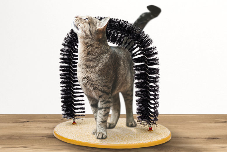 Cat Grooming Arch for £6.99