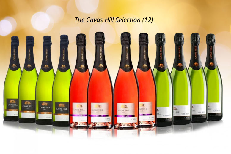 6 or 12 bottle selection of Cavas Hill Cava & Brut from £49.99