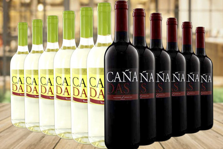 12 Bottle Mixed Selection of Cañadas Red & White Wine for £39