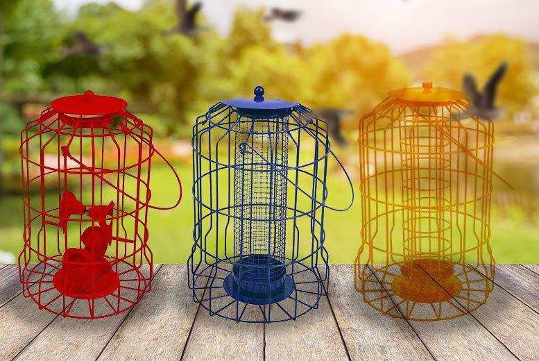 Squirrel-Proof Bird Feeder – 3 Models! for £4.99