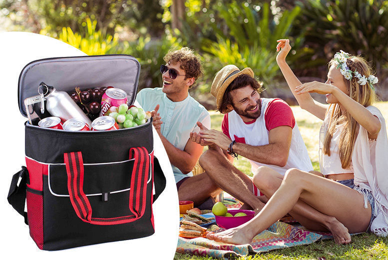 Large 17L Picnic Bag from £6.99