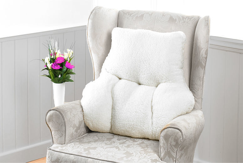 Luxury Lumbar Support Cushion for £12