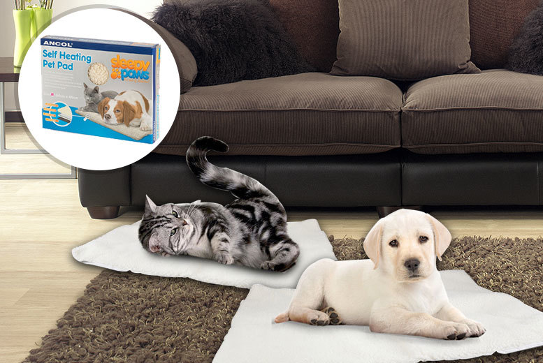 Sleepy Paws Self-Heating Pet Bed for £6.99