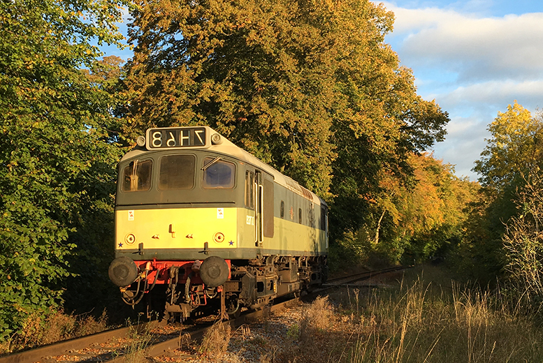£49 for afternoon tea for two people aboard a 1950s heritage dining train on the Ecclesbourne Valley Railway