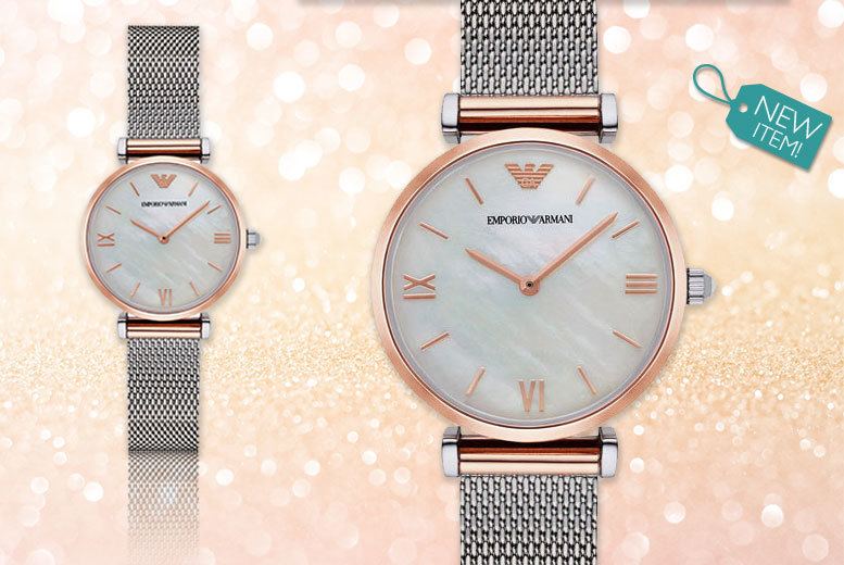 Emporio Armani Ladies' AR2067 Watch