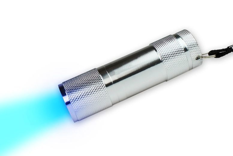 UV Pet Stain Torch for £4.99