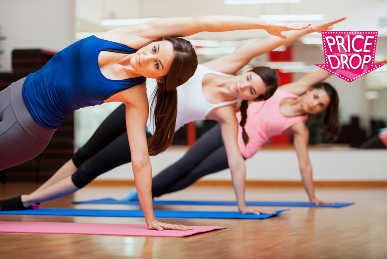 £19 instead of £199 (from Centre of Excellence) for an online Pilates diploma course - save 90%