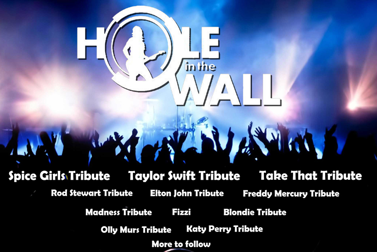 £12 instead of £25 for a day ticket to Hole In The Wall Festival in Shropshire, £29 for a weekend ticket with camping - save up to 52%