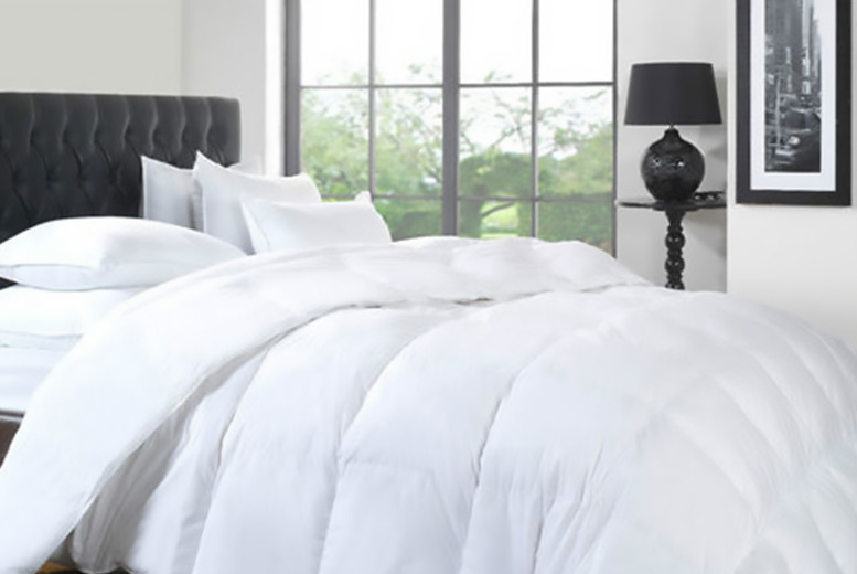 Anti-Allergy 13.5 Tog Winter Warm Duck Feather & Down Duvet from £22