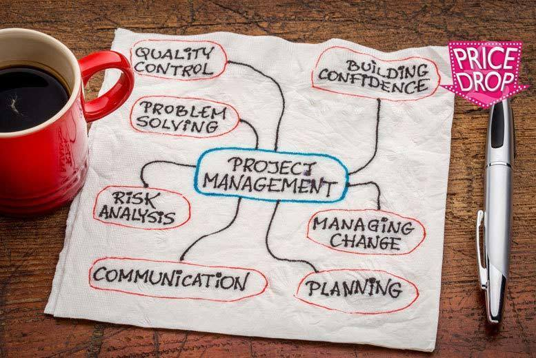 PMP Project Management Professional Course for £29