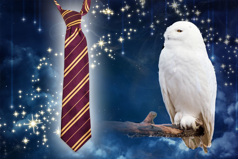 Harry Potter Inspired Tie for £3.99