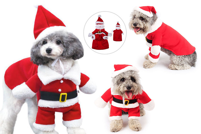 Santa Dog Costume – 5 Sizes! from £5.99