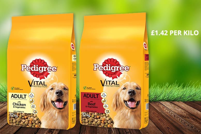 Pedigree Vital Protection Dry Dog Food 12kg – 2 Flavours! for £16.99