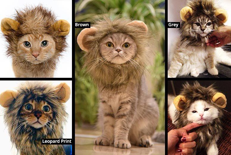 Cat Lion Mane – 3 Colours! for £6.99