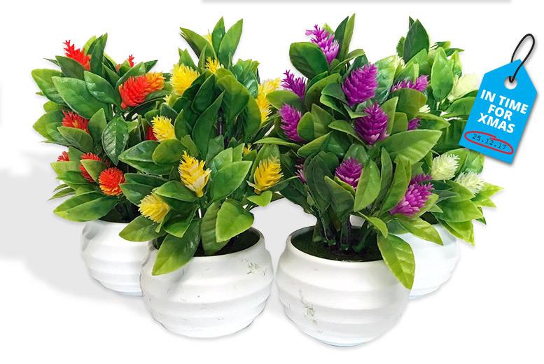 Set of 4 Artificial Indoor Plants for £8.99