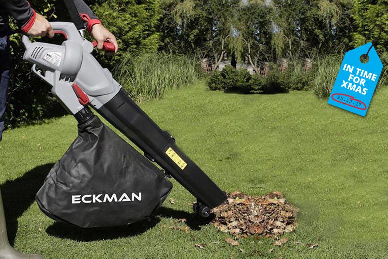 3000W 3-in-1 Leaf Blower, Vacuum & Shredder for £29.99