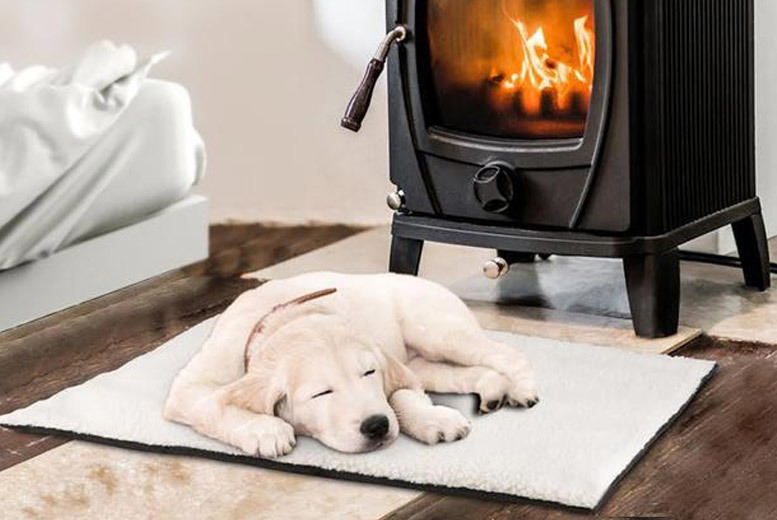 1 or 2 Self-Heating Pet Beds from £6.99
