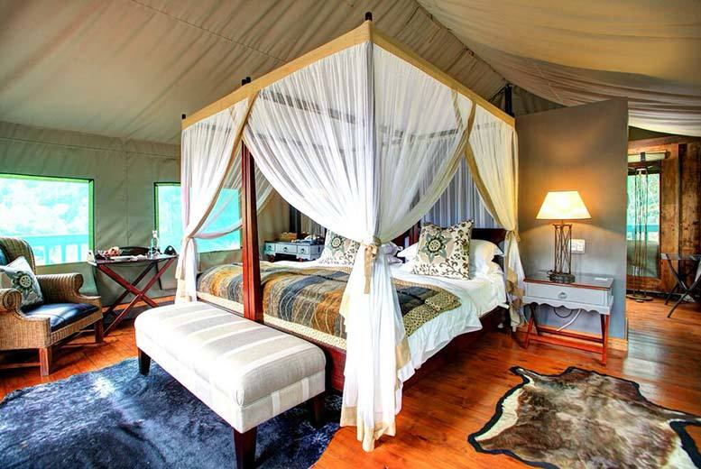 £429pp (at Botlierskop Private Game Reserve) for a five-night full board South African safari including daily game drives - save up to 46%