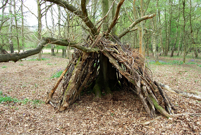 £3 for a child ticket to the Bushcraft Show featuring Ray Mears on 30th May 2016, £8 for an adult ticket, £16 for two tickets or £19 for a family of four - save up to 50%