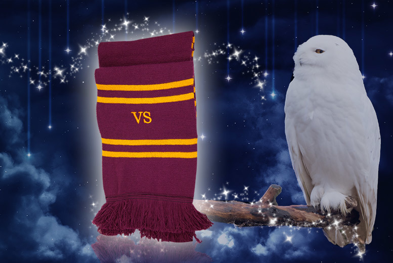 Personalised Gryffindor-Inspired Scarf for £14.99