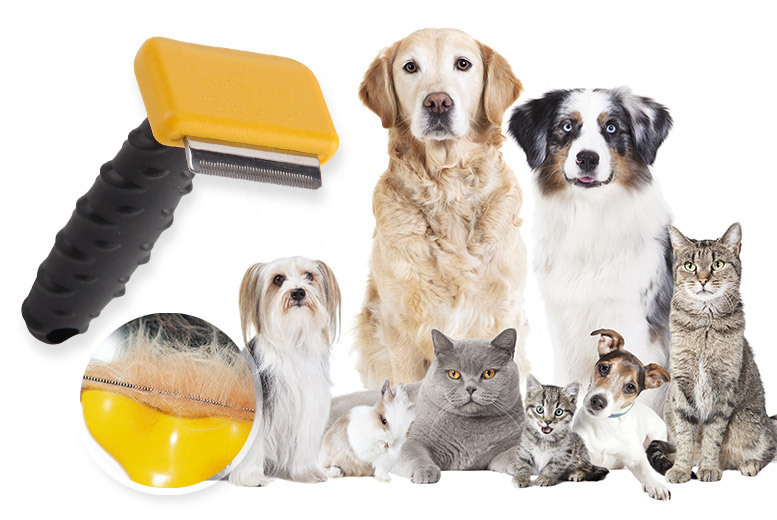 Pet Grooming Comb for £4.99