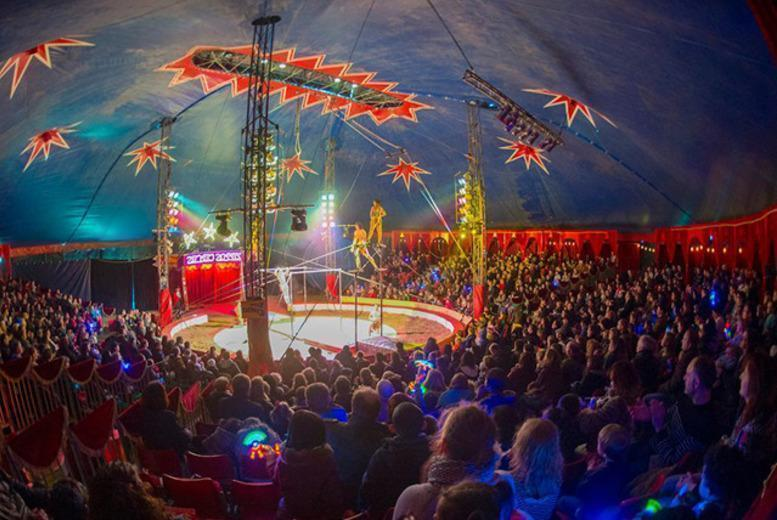 £9.25 for a side view ticket to see Zippos Circus, £10.75 for a front view ticket - choose from five locations and save up to 50%