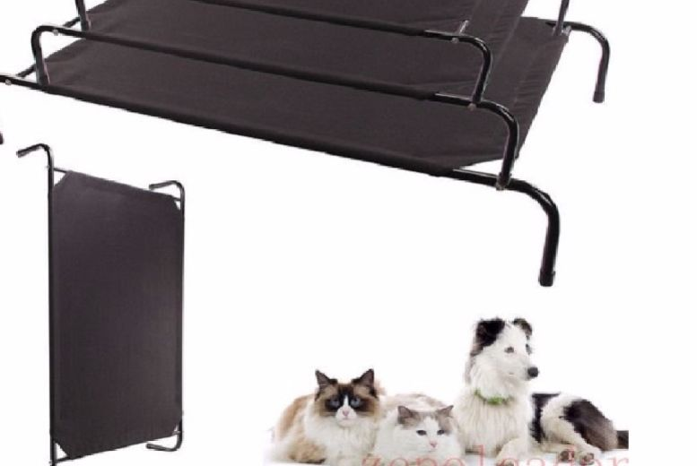 Waterproof Elevated Dog Bed – 3 Sizes! from £12