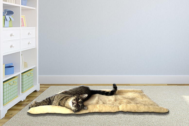 £8.99 instead of £16 for a two-in-one KittyKave mat and tunnel from Callisto Concepts - save 44%