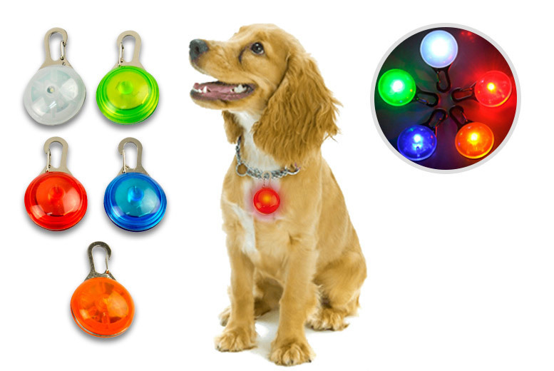LED Pet Safety Collar Clip – 5 Colours! for £1.99