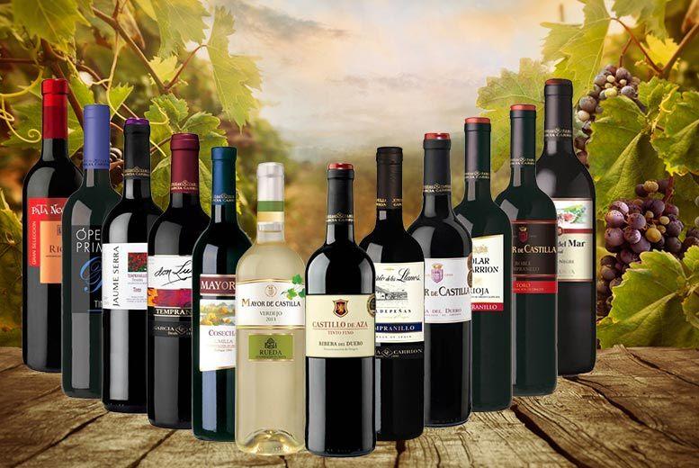 12 bottles of spanish wine