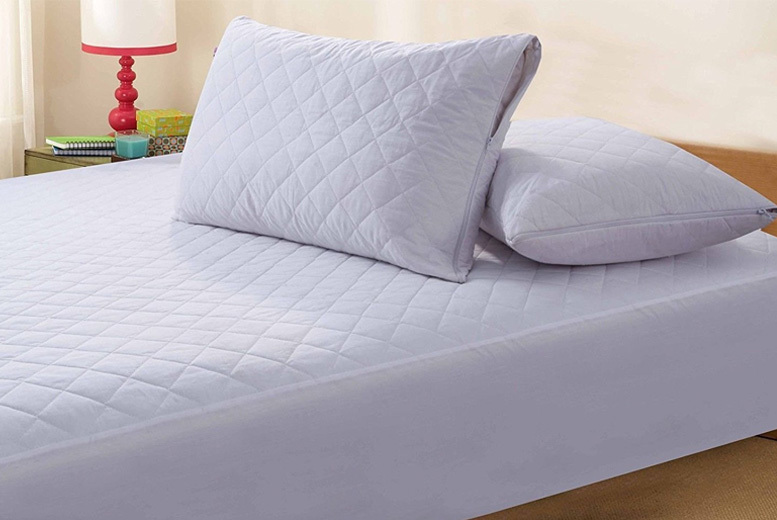 2 or 4 Zipped Quilted Anti-Allergy Pillow Protectors