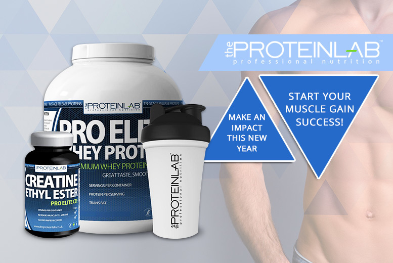 2 or 4-Month Pro Elite Whey Protein & Creatine with Shaker – 8 Flavours! from £29.00