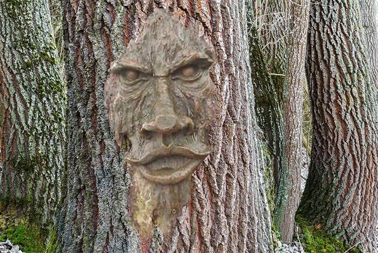 Game of Thrones-Inspired Wood-Effect Tree Face Sculpture for £9.99